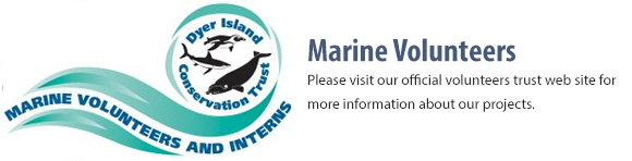 Marine Volunteers