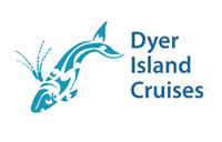 Why choose Dyer Island Cruises?