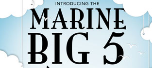 INFOGRAPHIC – Introducing the Marine Big 5