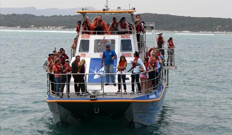 dyer-island-cruises-boat02