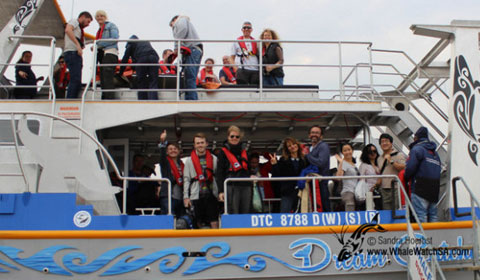 dyer-island-cruises-boat03