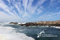 18 February | Eco Marine Big 5 Tours
