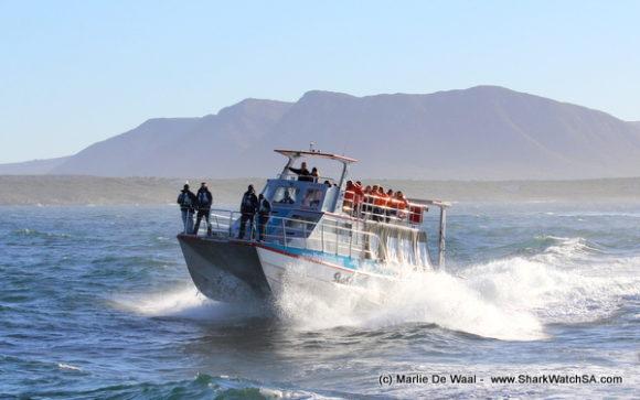 boat cruises (1)