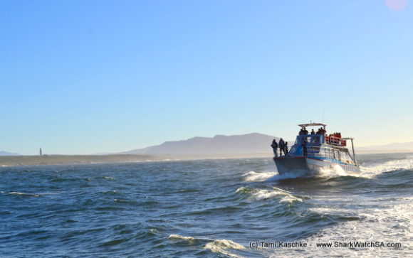 boat cruises (2)