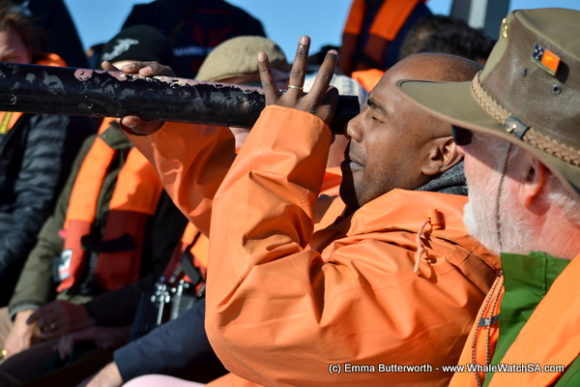 Boat Based Whale Watching Tours South Africa (3)