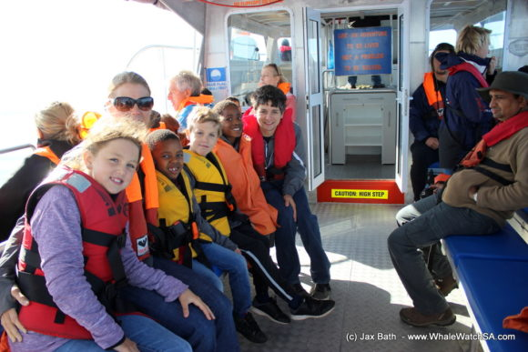 Whale Watching Boat Based eco Marine Safaris Dyer Island Cape Town South Africa (11)