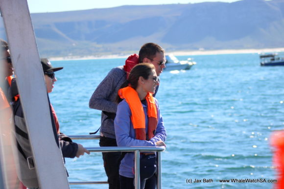 Whale watching Boat Based Tours South Africa Marine Big 5 Eco safari (16)