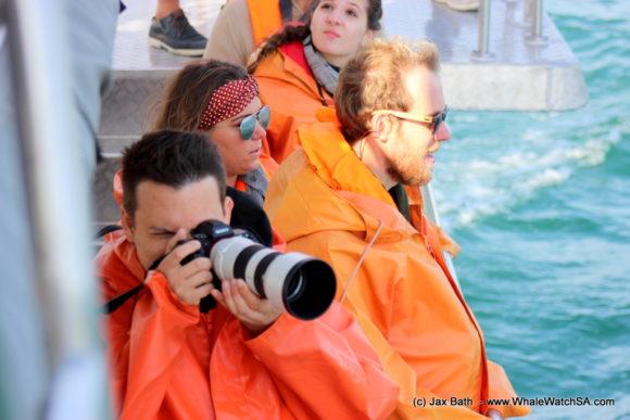Whale watching tours Gansbaai South Africa Boat Based Marine Safari (3)