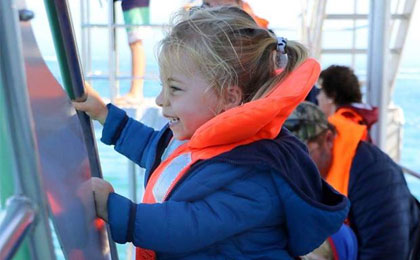 Cape Town Whale Watching for all ages