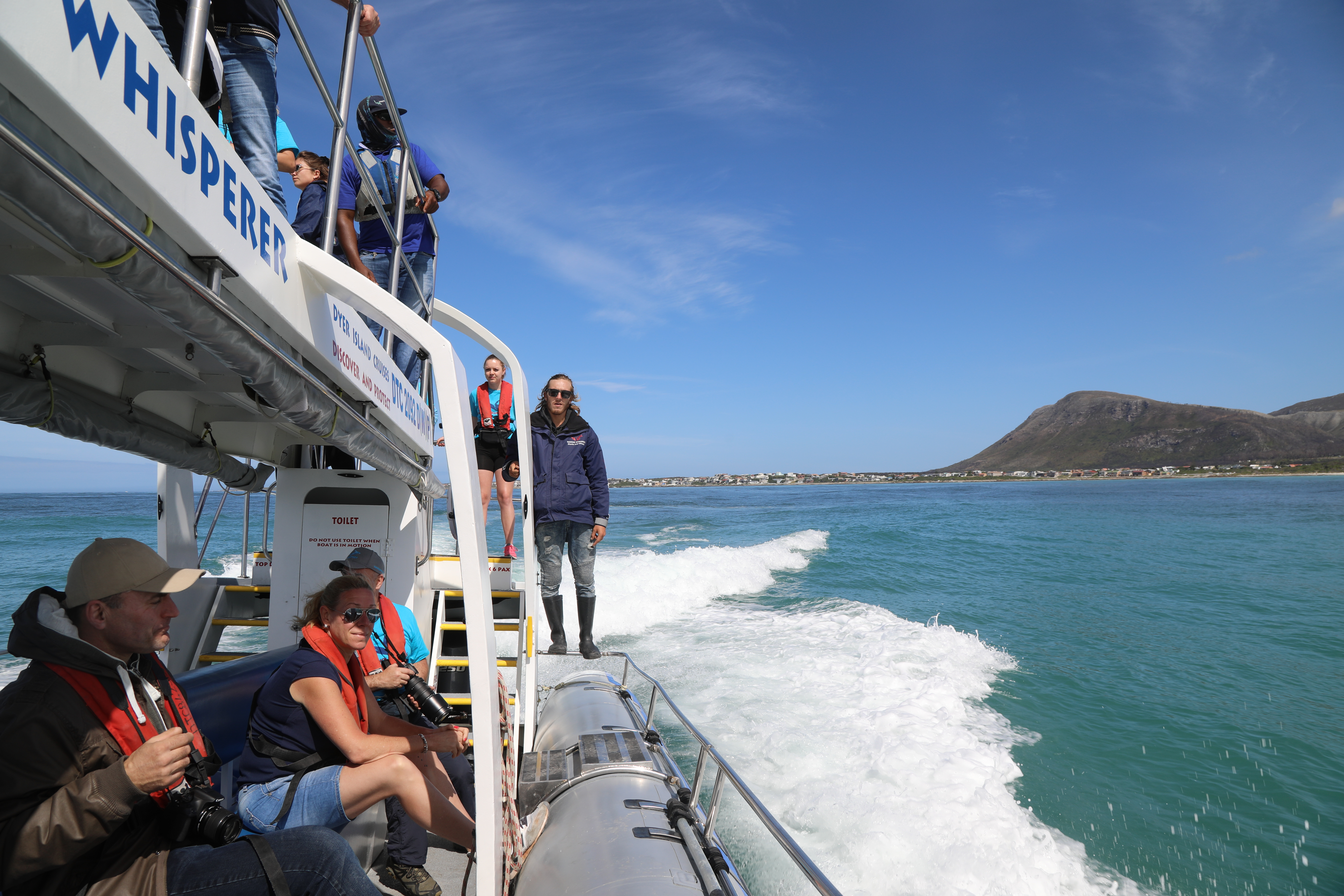 The dolphins are back! Eco tour on whale whisperer 27 January 2020