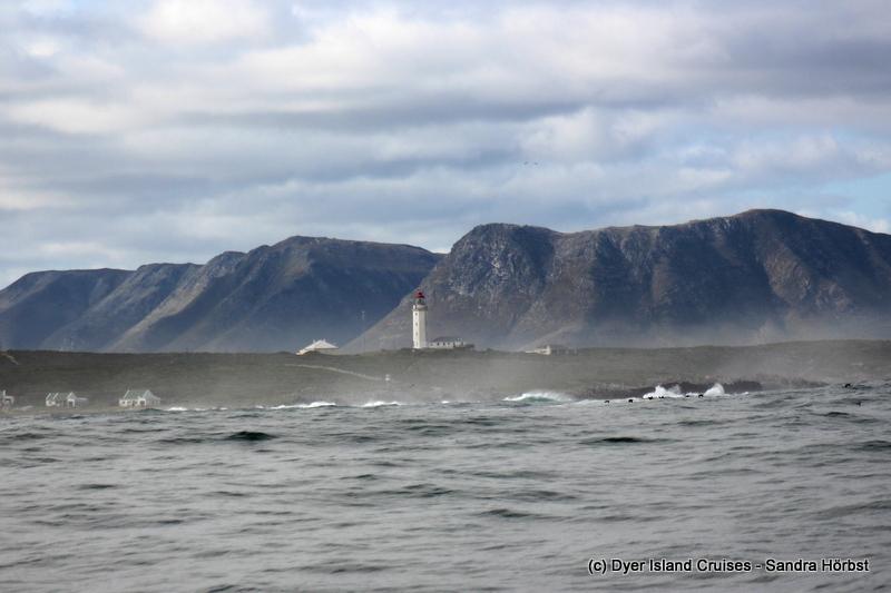 Sunny Saturday at sea! Marine Big 5 Daily Blog